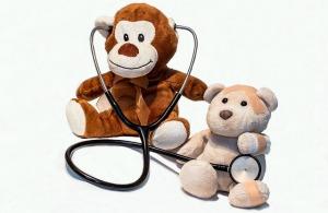 doctor-bears